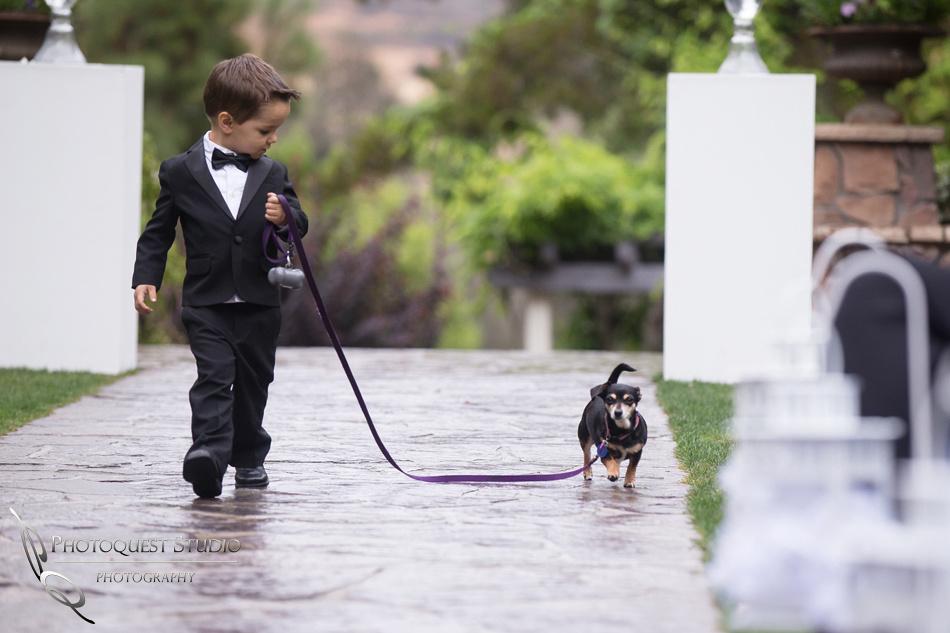 Wedding photo with kid and dog at Pala Mesa Resort Fallbrook by Temecula Wedding Photographer