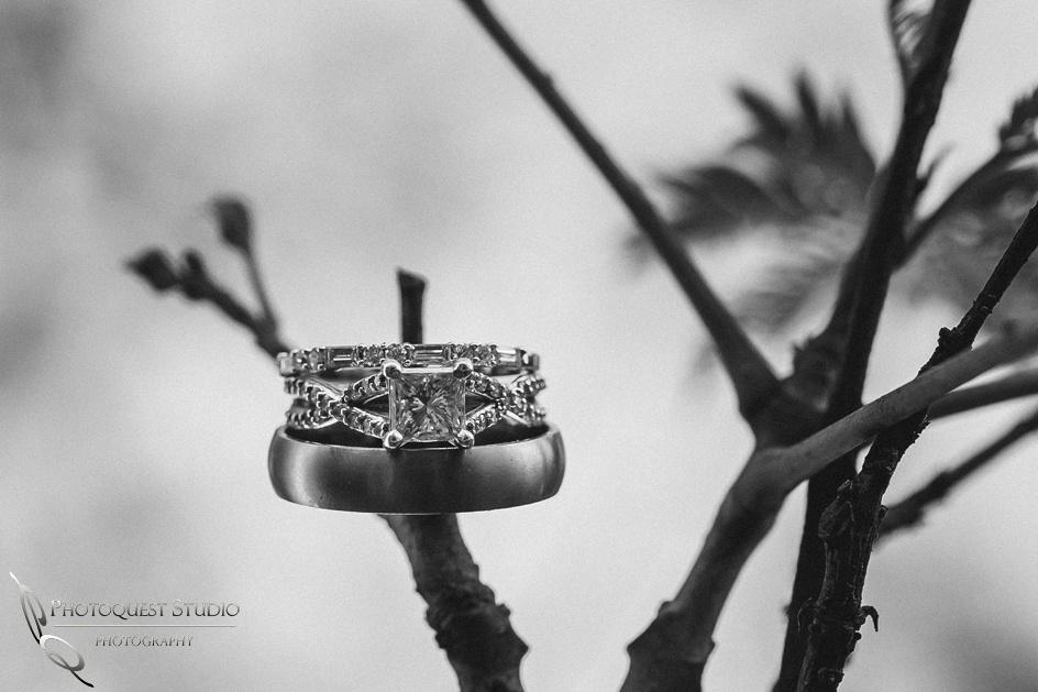 Temecula Wedding Photographer, Wedding Rings