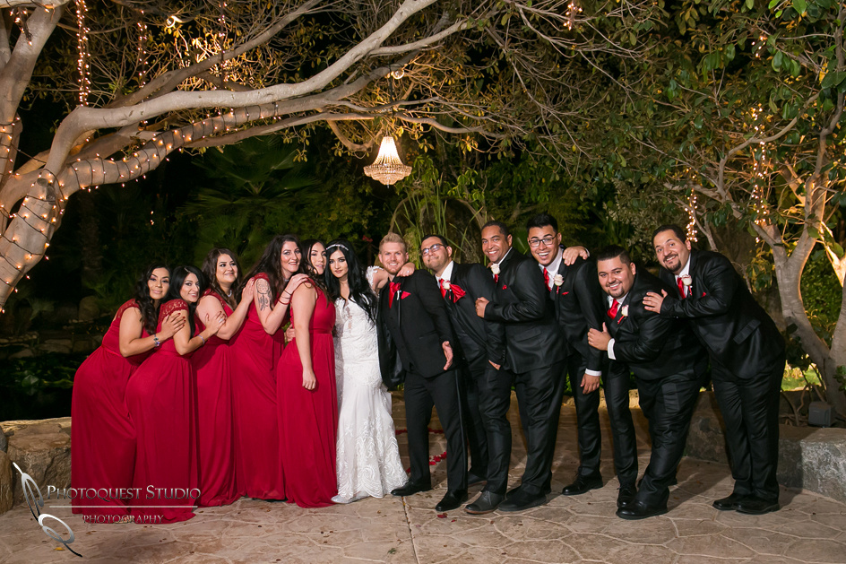 Bride and Groom and wedding party