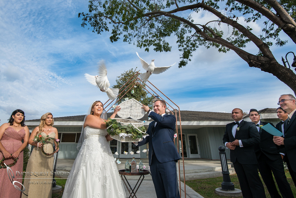 Dove release at wedding photo