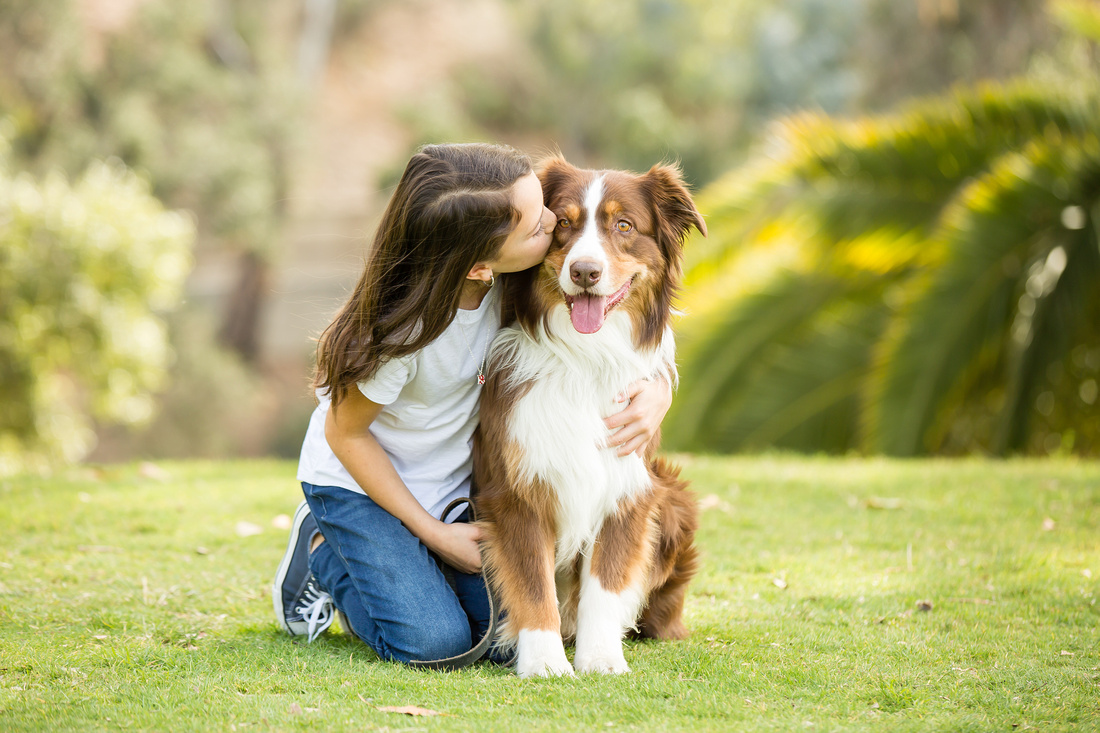 Dog, best friend forever, Family Photo in Southern California