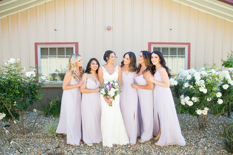 Temecula-Wedding-Photographers at Wiens Winery