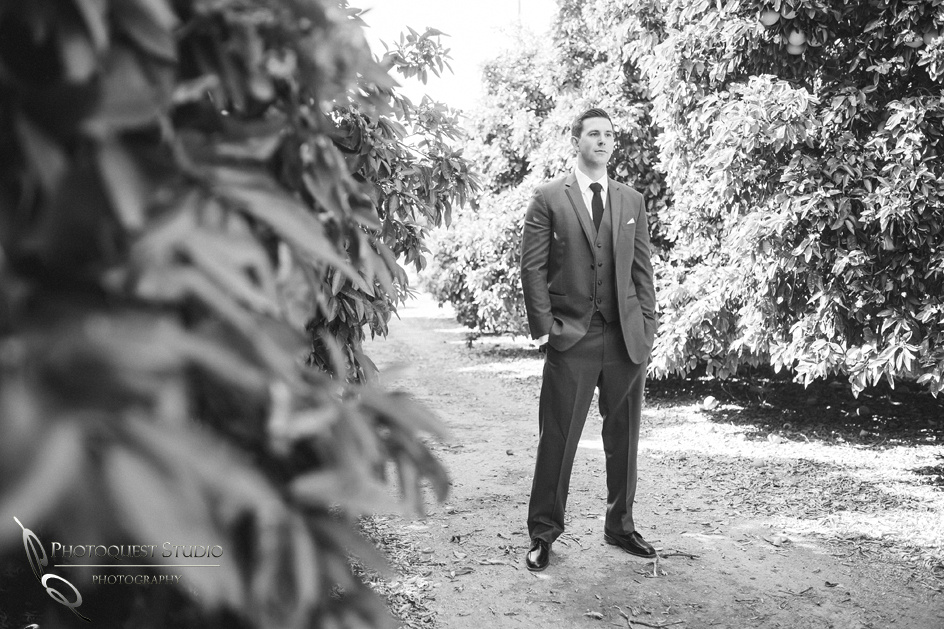 Temecula-Wedding-Photographer,-Paige-and-Alex-at-Wiens-Winery-452
