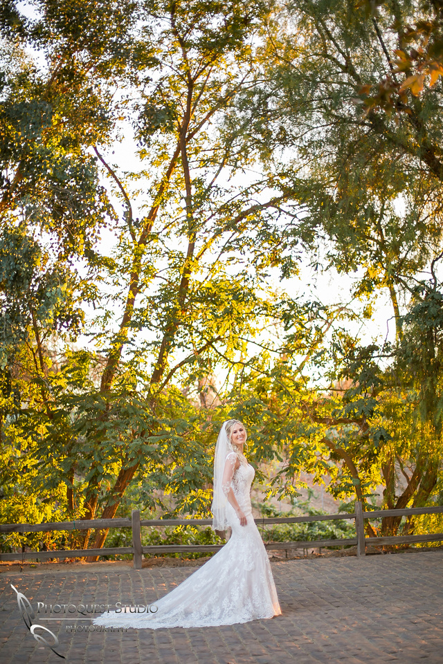 Temecula wedding photographer at winery wedding