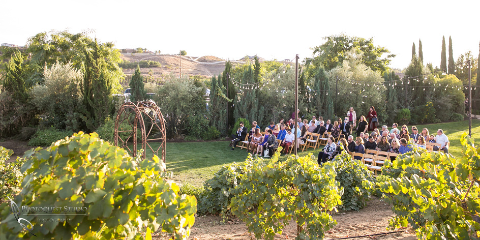 Engagement,-Wedding-Photographer-in-Temecula,-Wedding-Photo-at-Europa-Village-Winery-(17)