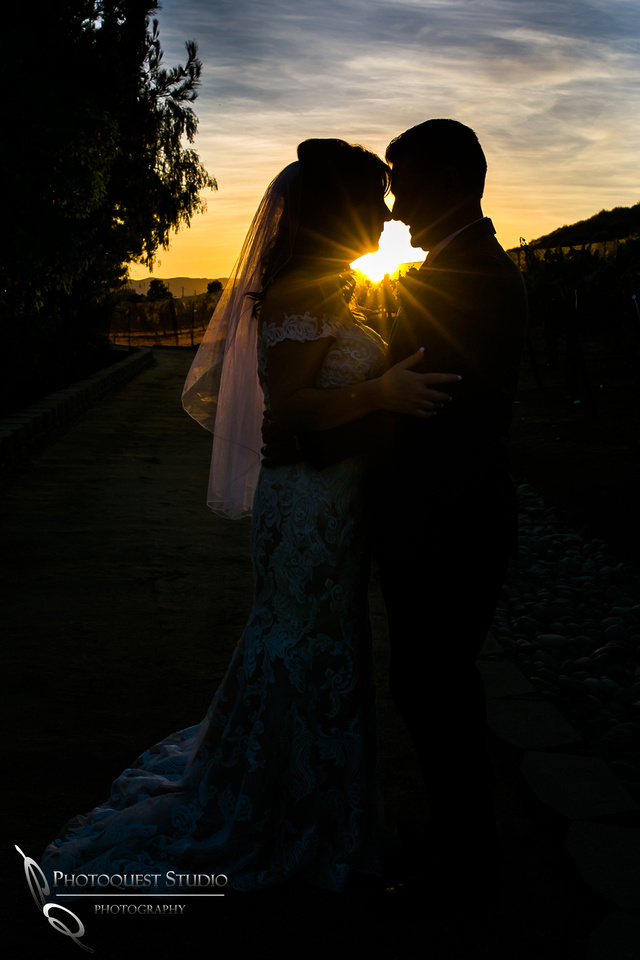 Engagement,-Wedding-Photographer-in-Temecula,-Wedding-Photo-at-Europa-Village-Winery-(31)