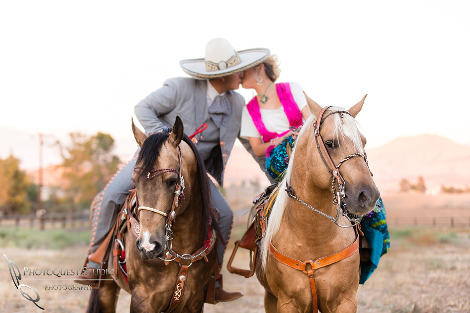 beautiful horses with soon to be bride and groom