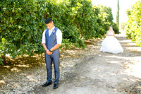 Wedding photo at Wiens Winery by Temecula wedding photographer of Photoquest Studio, Samantha & Joe (16)