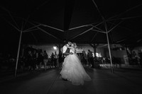 Wedding Photo at Wiens Family Cellars by Photoquest Studio, Temecula Wedding Photographer - Samantha & Joe-1075