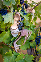 Wedding Photo at Wiens Family Cellars by Photoquest Studio, Temecula Wedding Photographer - Samantha & Joe-7