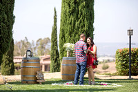 She had no idea - Surprise Proposal at Temecula Winery by Wedding Photographer