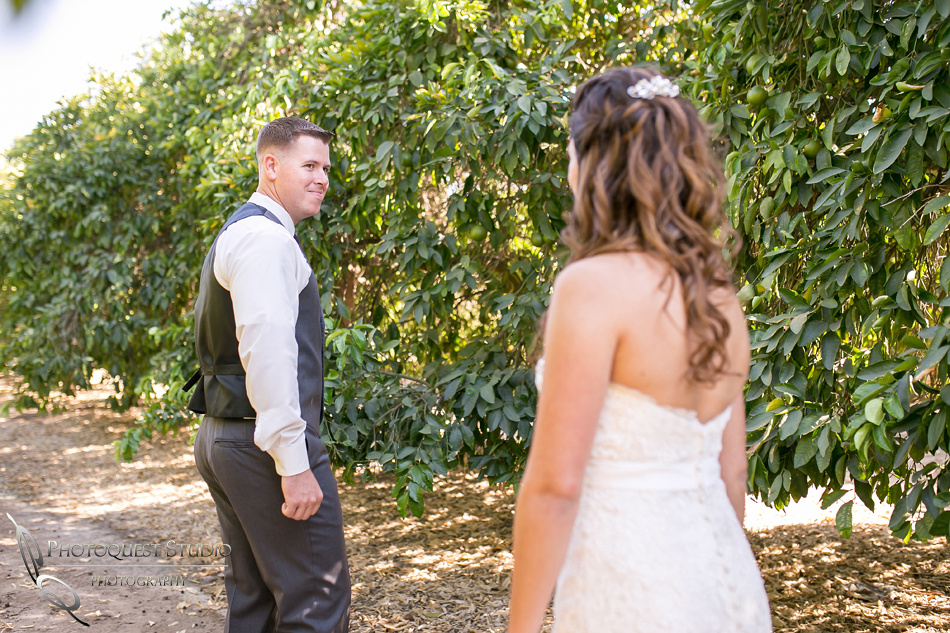 Temecula Winery, Wiens Family Cellars by Temecula Wedding Photographer