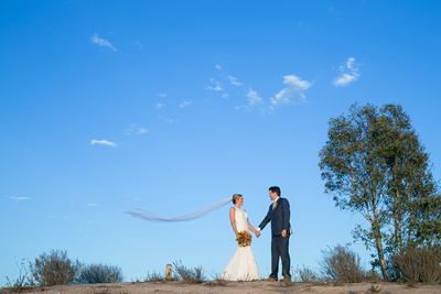 Mount-Palomar-Temecula-Winery-Wedding-Melissa-and-Chris-at-sunset-with-flying-veil