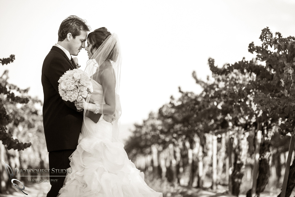 Wedding at Ponte Winery black and white photo
