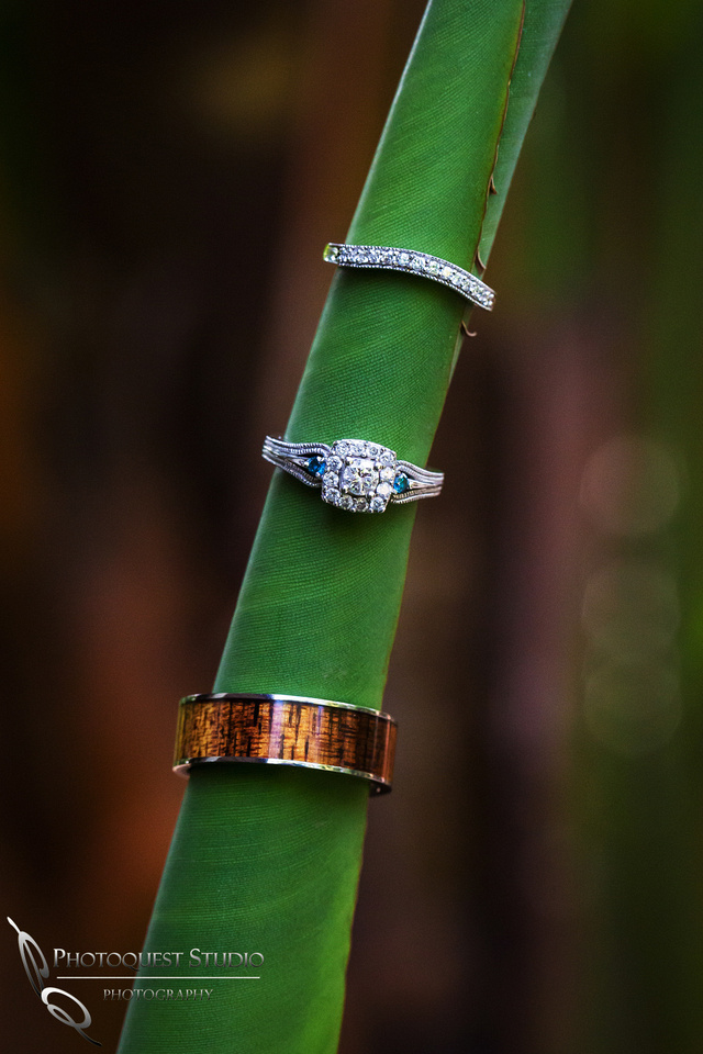 Amazing wedding rings. Wedding photos at Grand Tradition Estate Fallbrook by Wedding Photographer in Temecula
