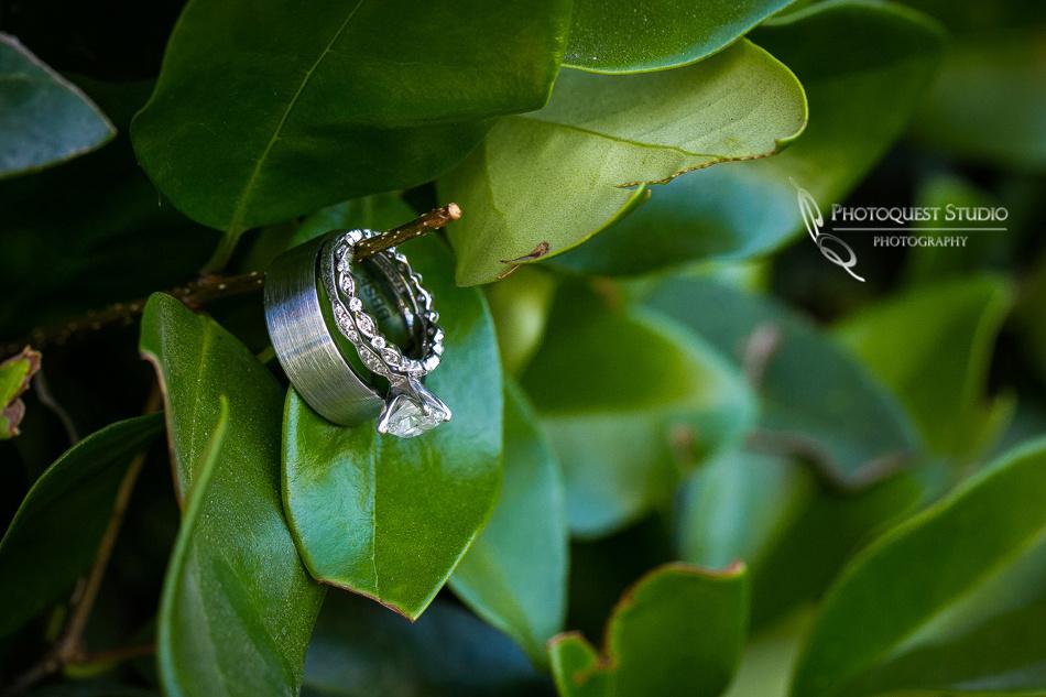 Wedding-Photo-at-Temecula-Winery---Wiens-Family-Cellars-and-Pechanga-Casino