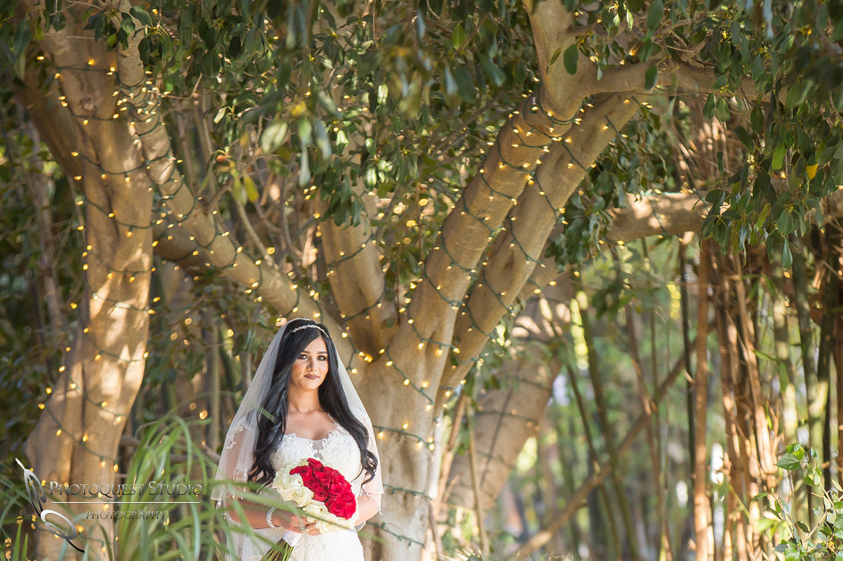 Wedding-Photo-at-Paradise-Falls-by-Temecula-Wedding-Photographer---Doaa-and-Michael-(239)