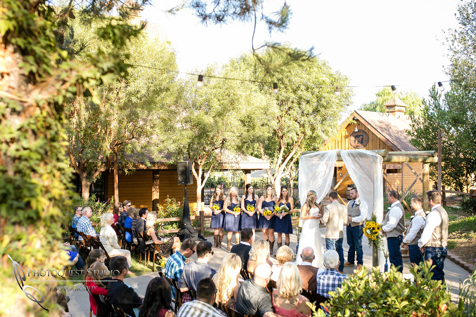 Wedding at Longshadow Ranch Winery by Temecula Wedding Photographer (36)