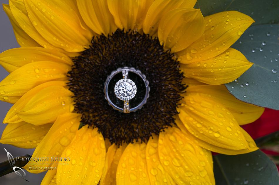 Diamond and Sun Flower by Temecula Wedding Photographer