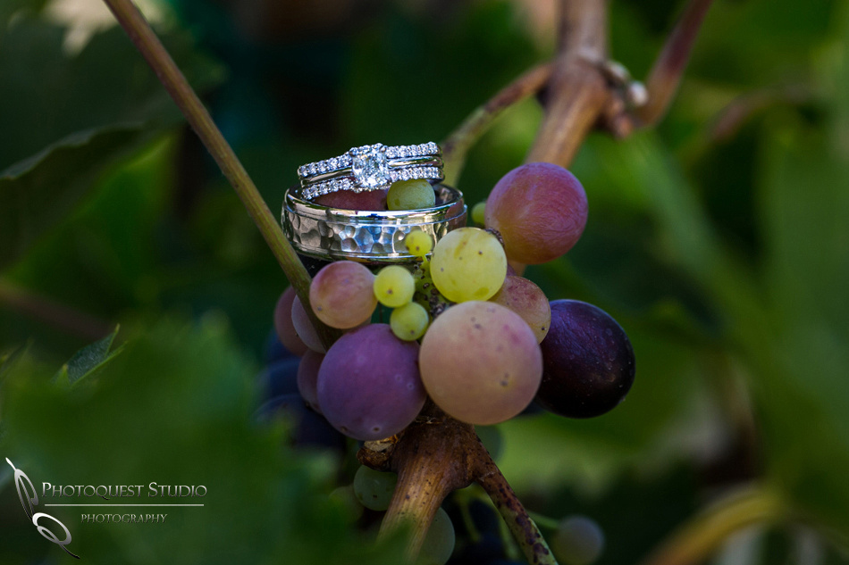 Wedding-Photographer-in-Temecula-at-Wiens-Family-Cellars-Winery