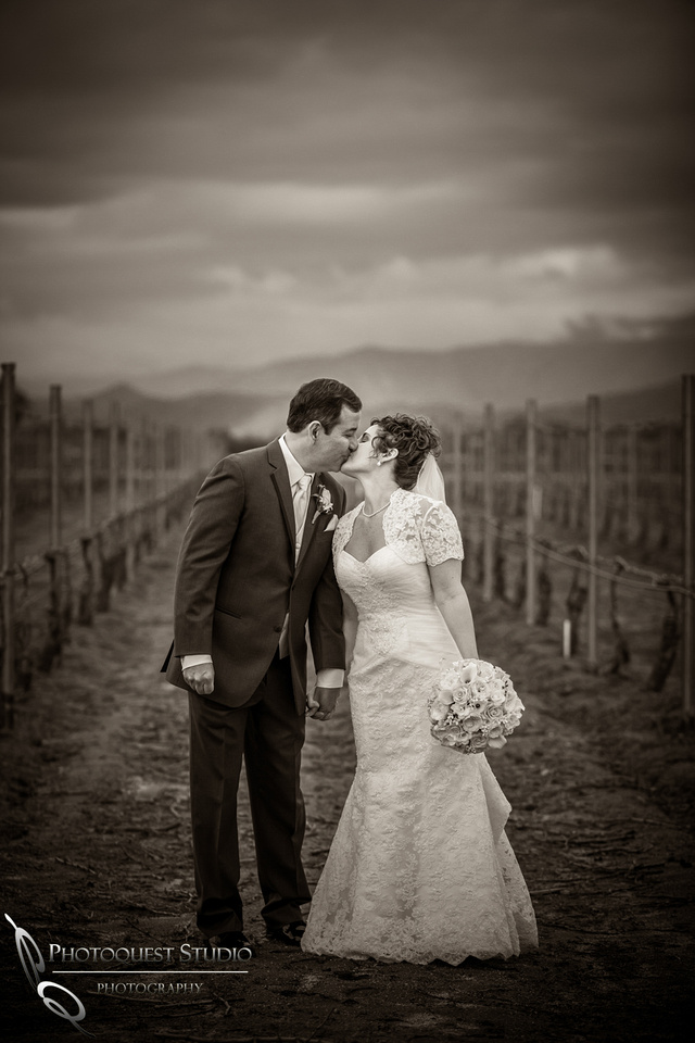 Wedding at Ponte Winery kissing in the vineyard