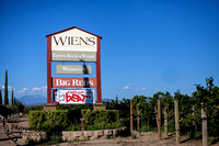 Temecula Wedding Photographer, Concert Photographer at Wiens Family Cellars Winery, The English Beat