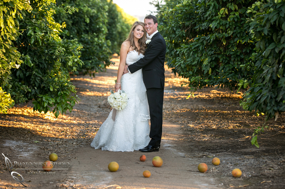Beautiful wedding at Wiens Family Cellars Temecula Winery - Sarah & Shawn