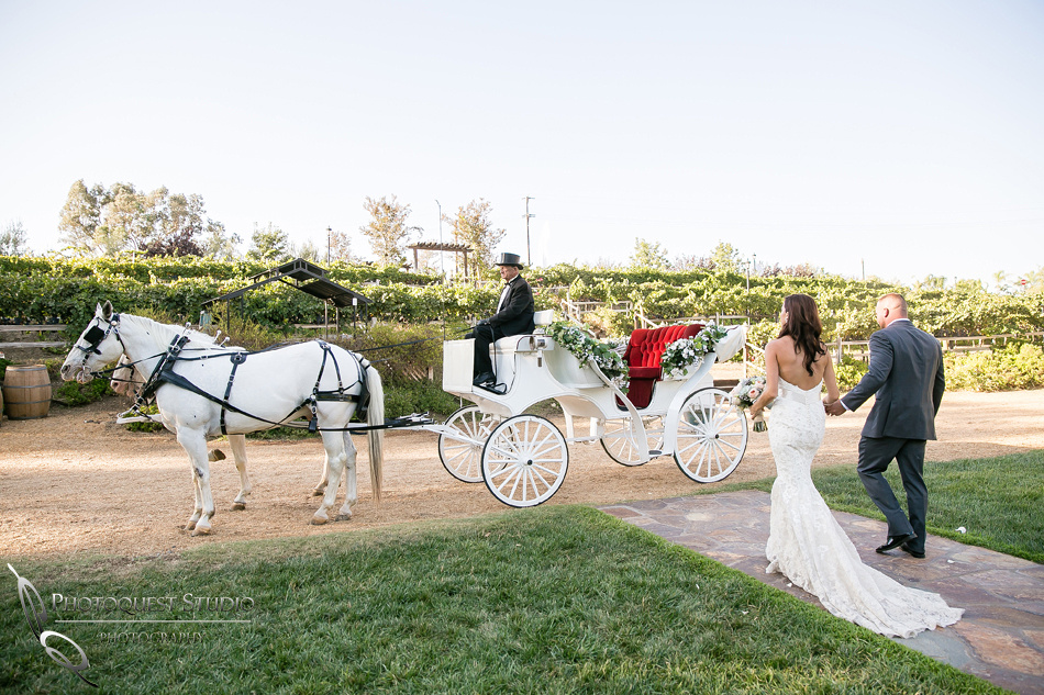 Wedding photo with horse carriage at Lake Oak Meadows, Temecula Winery Photographer