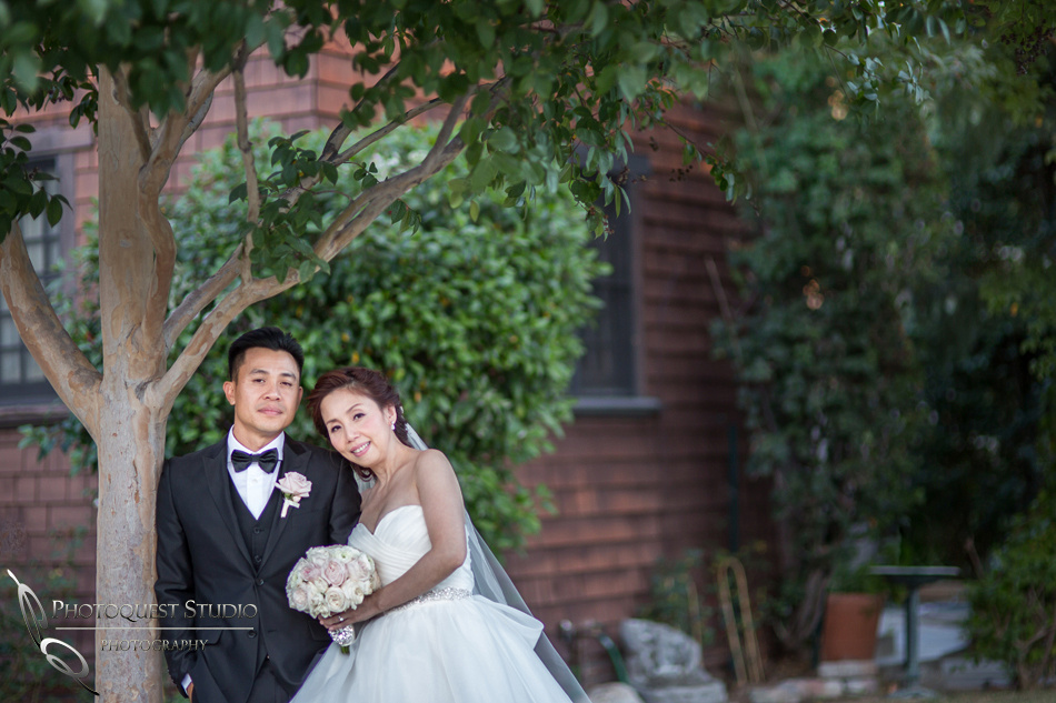 Chapel of Orange, the bride and groom by the tree