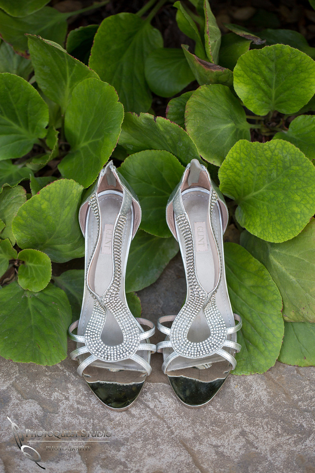 Bling bling wedding shoes