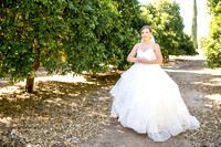 Wedding photo at Wiens Winery by Temecula wedding photographer of Photoquest Studio, Samantha & Joe (15)