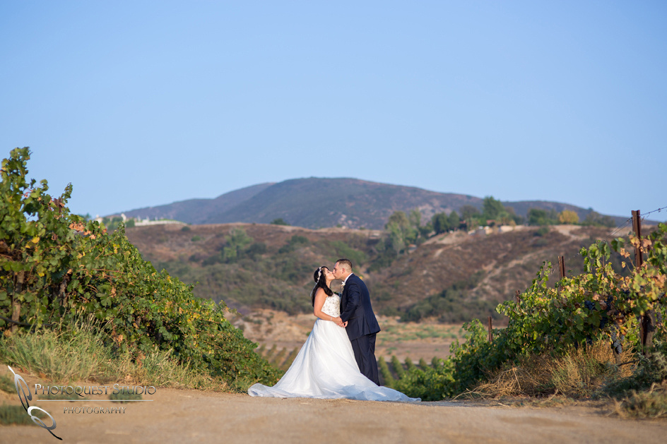 Wedding Photo at Leoness Cellars by Temecula Winery Photographer, Cynthia and Adam (45)