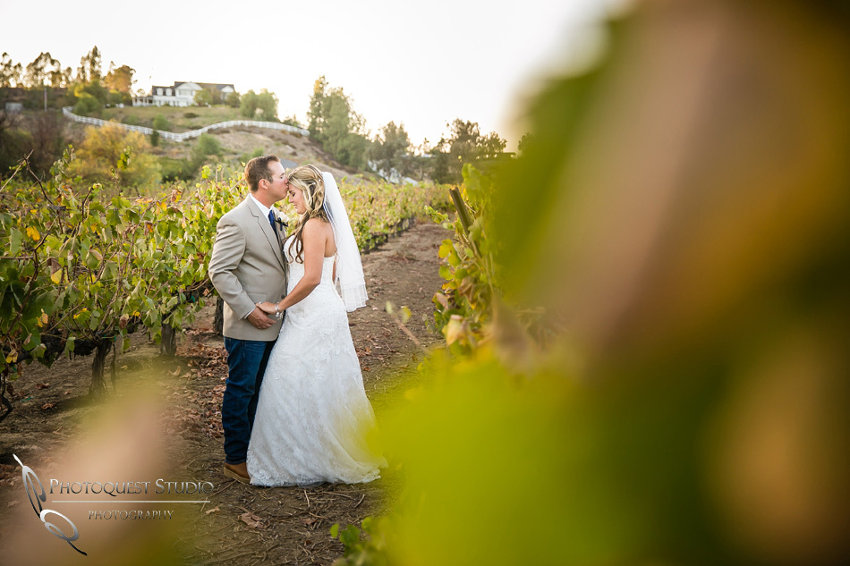 Just the two of us and the vine by Temecula wedding photographer