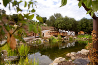 Wedding Photos at Serendipity Garden Weddings by Temecula Wedding Photographer - Sandra and Robert Wedding