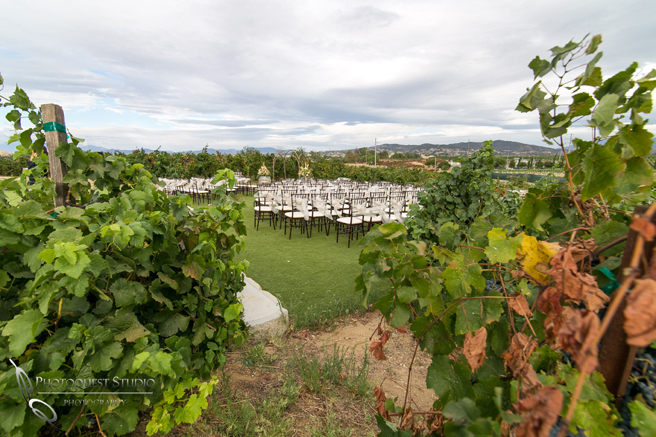 Monte De Oro Winery Wedding